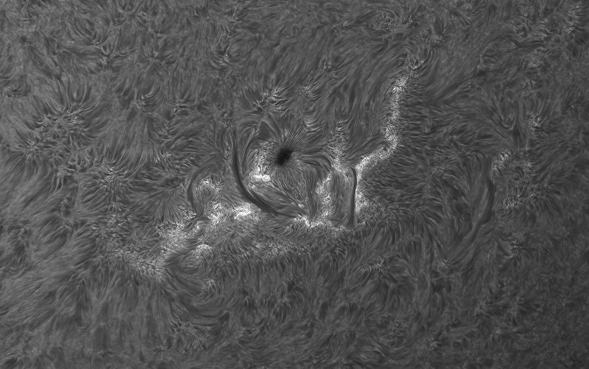 Sun in Ha Band with HaT telescope